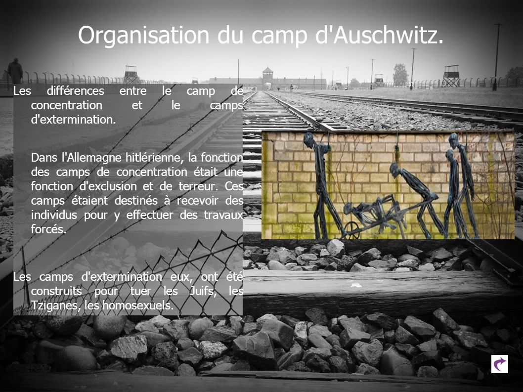 Organisation du camp d Auschwitz.