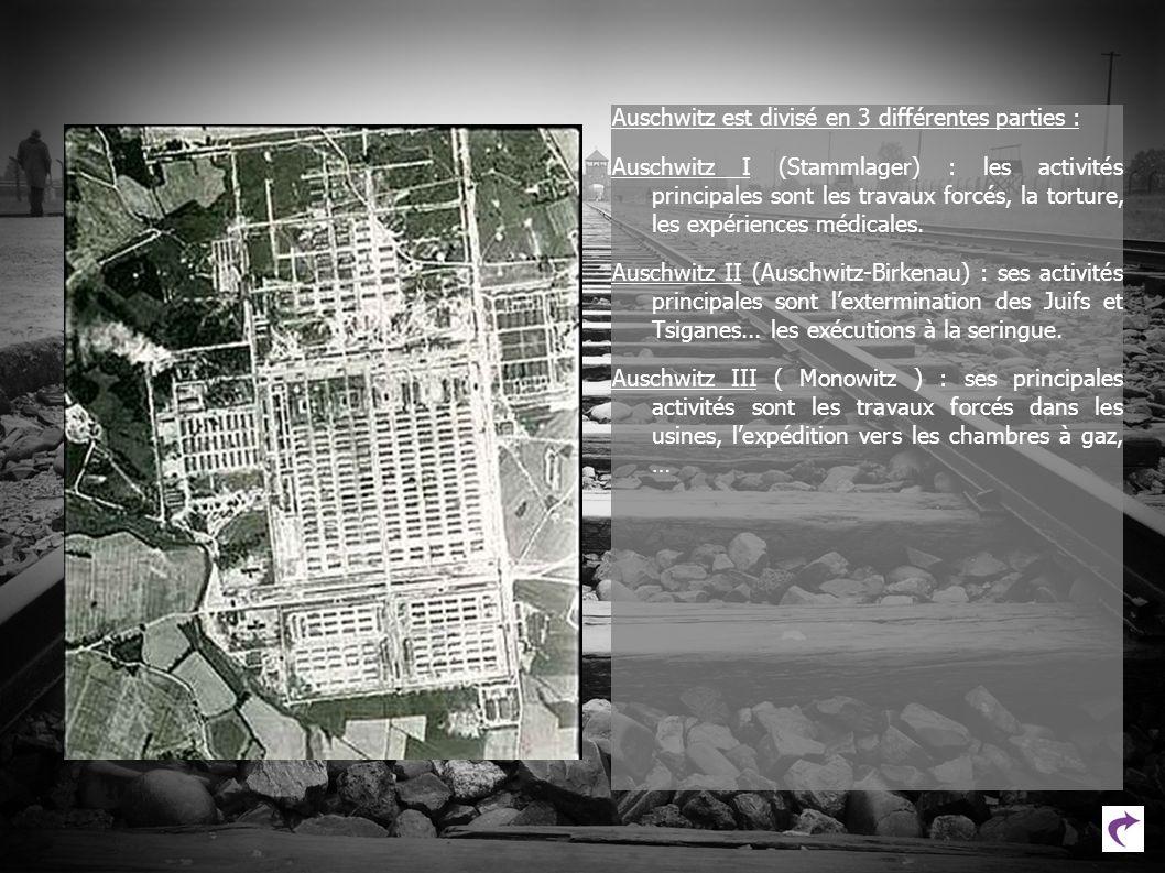 Auschwitz est divisé en 3 différentes parties :