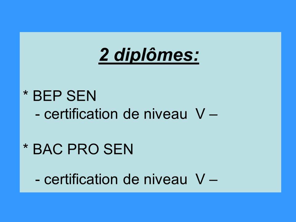 2 diplômes:. BEP SEN - certification de niveau V –
