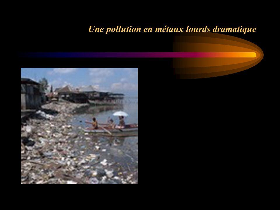 Une pollution en métaux lourds dramatique
