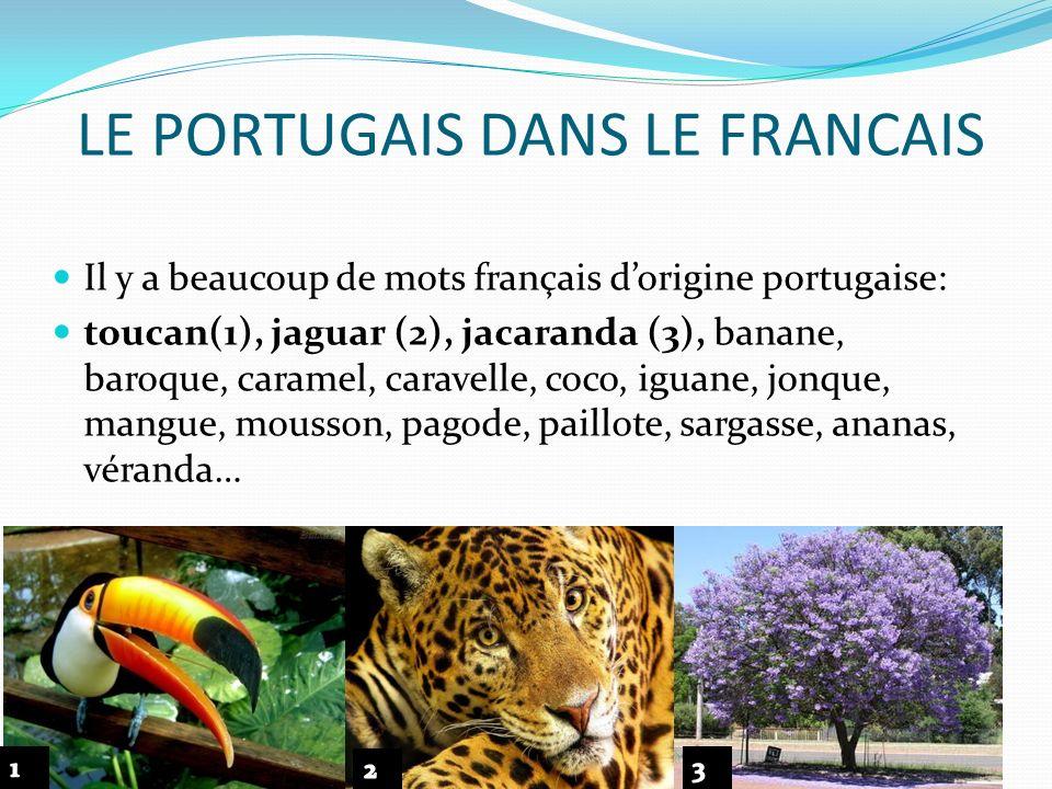 LE PORTUGAIS DANS LE FRANCAIS