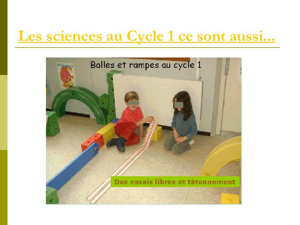 Les sciences au Cycle 1 ce sont aussi...