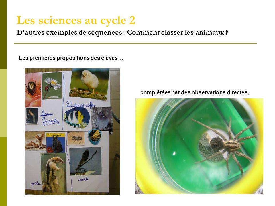 Les sciences au cycle 2 D'autres exemples de séquences : Comment classer les animaux