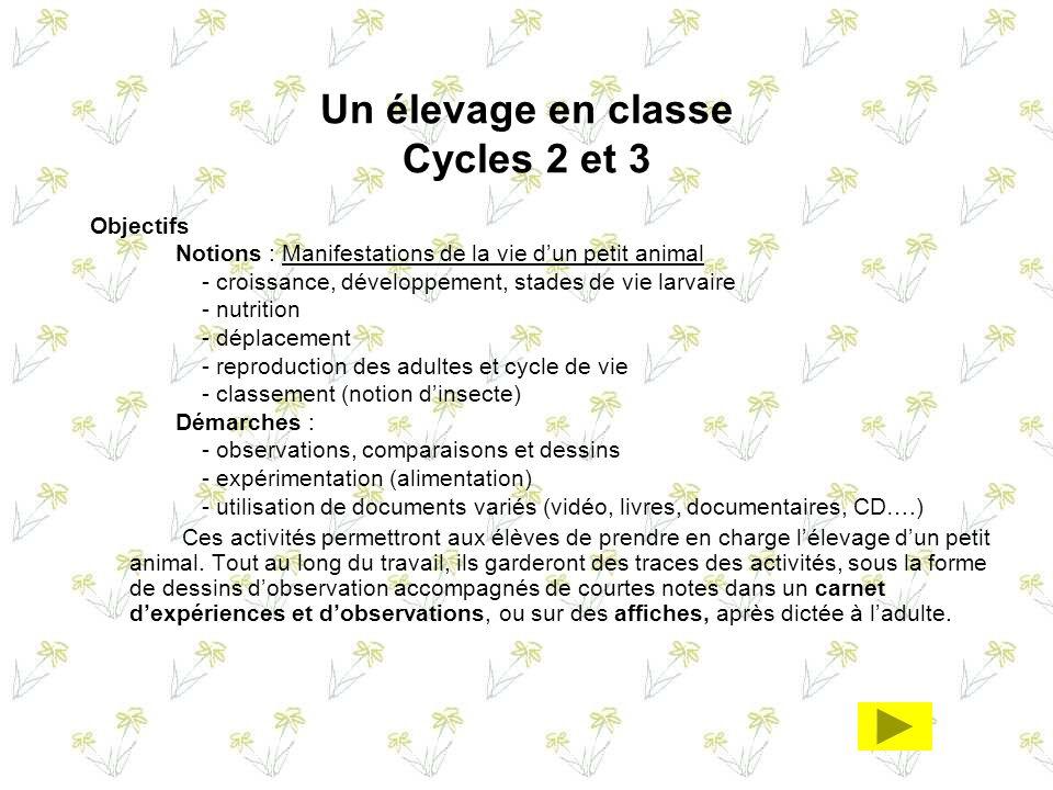 Un élevage en classe Cycles 2 et 3