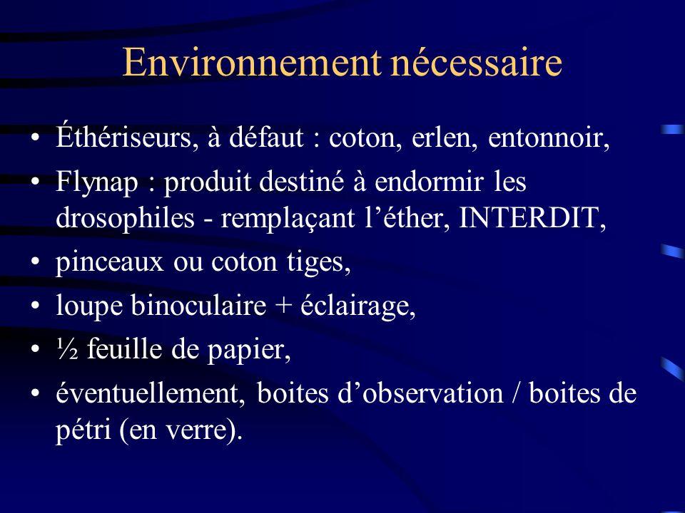Environnement nécessaire