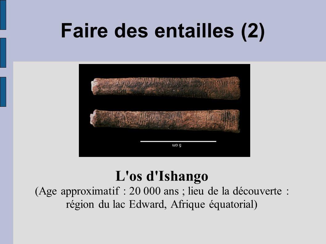 Faire des entailles (2) L os d Ishango