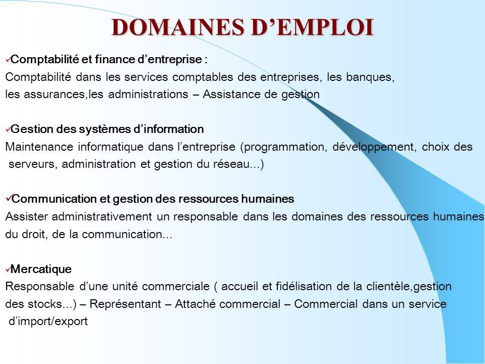 DOMAINES D'EMPLOI Comptabilité et finance d'entreprise :