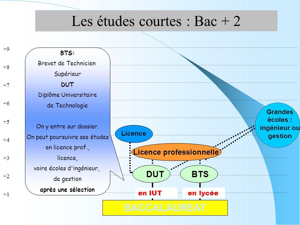 Grandes écoles : ingénieur ou gestion Licence professionnelle