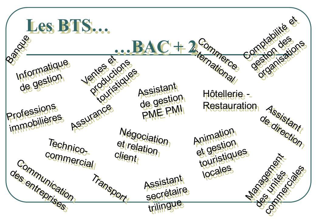 Les BTS… …BAC + 2 Comptabilité et gestion des organisations Banque