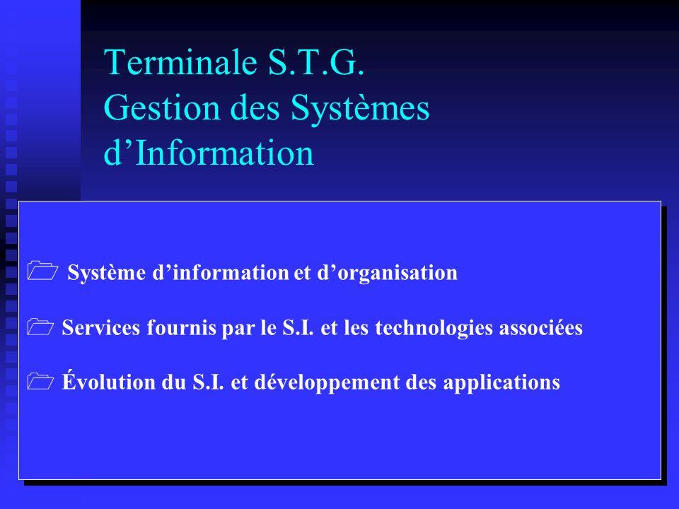 Terminale S.T.G. Gestion des Systèmes d'Information