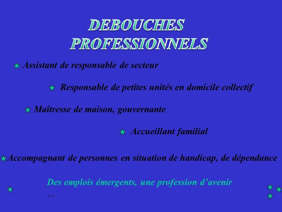 DEBOUCHES PROFESSIONNELS