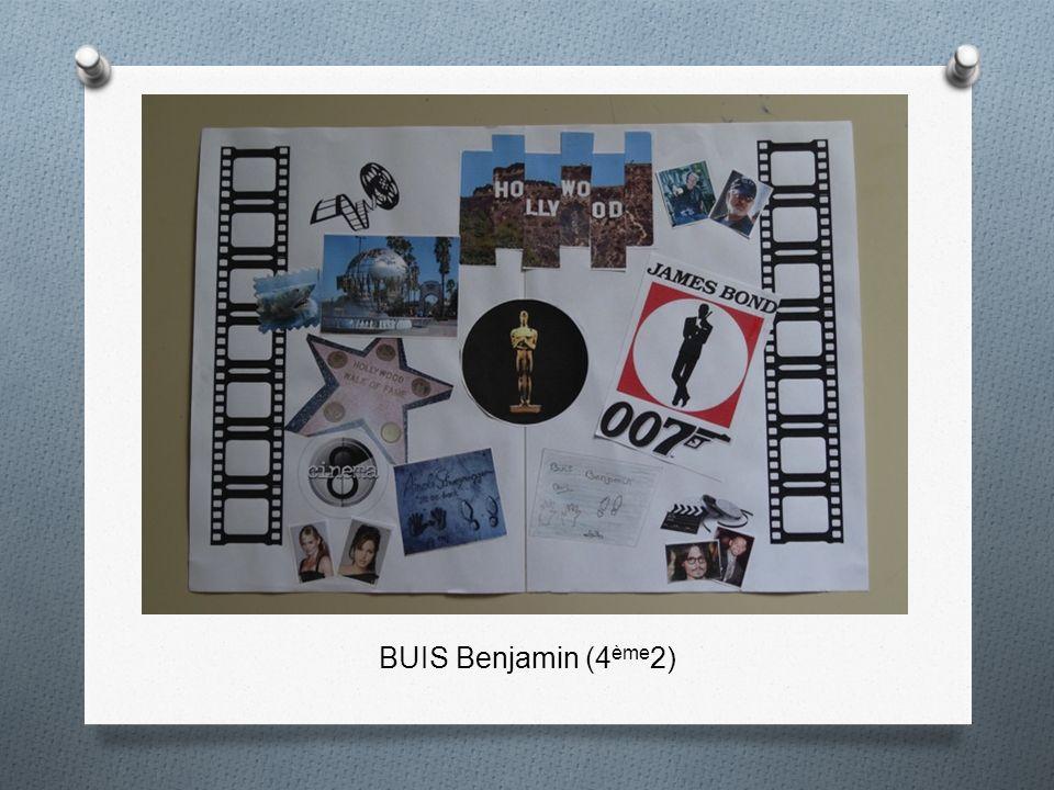 BUIS Benjamin (4ème2)