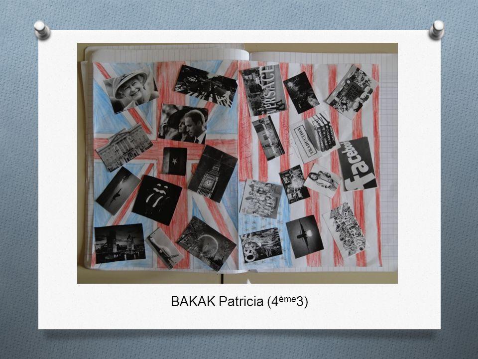 BAKAK Patricia (4ème3)