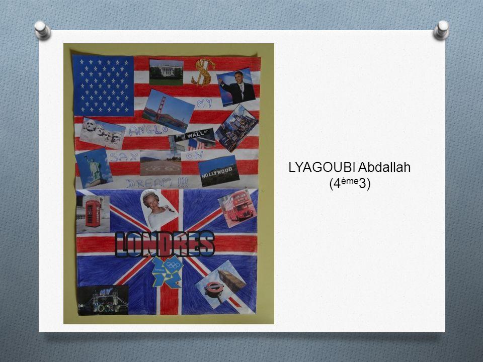 LYAGOUBI Abdallah (4ème3)