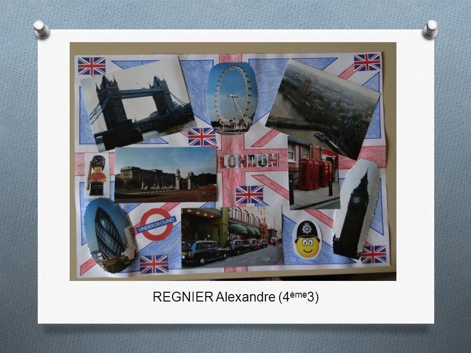 REGNIER Alexandre (4ème3)