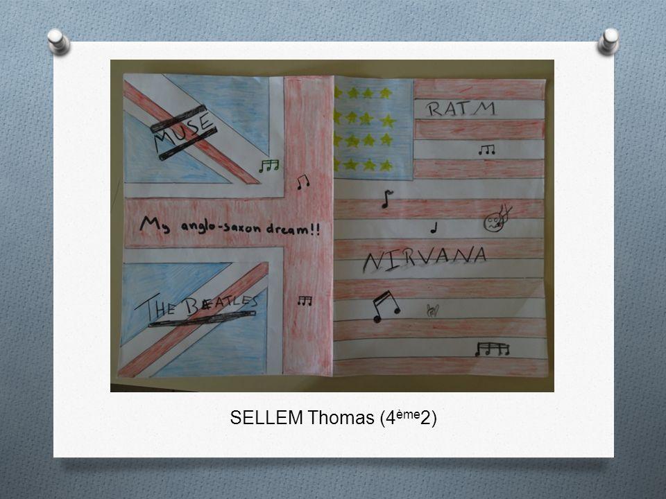 SELLEM Thomas (4ème2)
