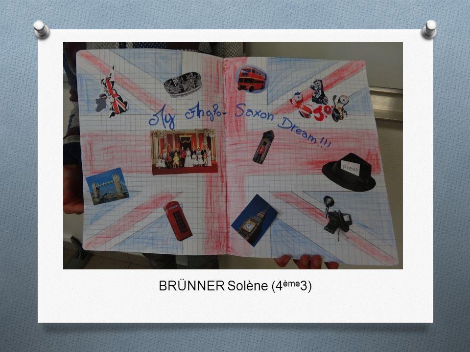 BRÜNNER Solène (4ème3)