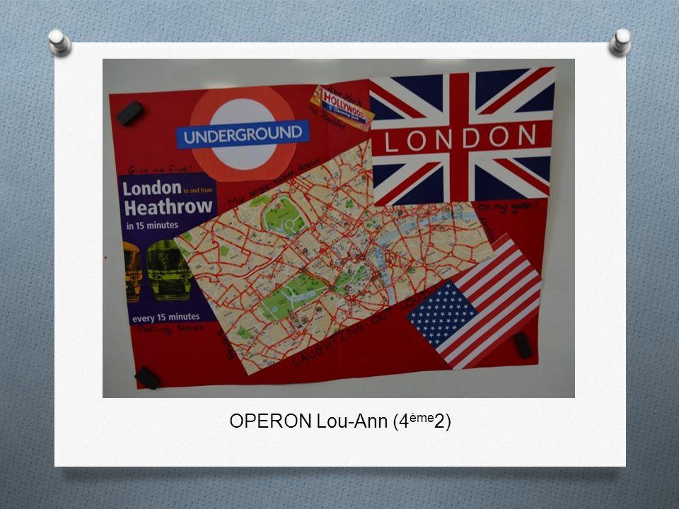 OPERON Lou-Ann (4ème2)