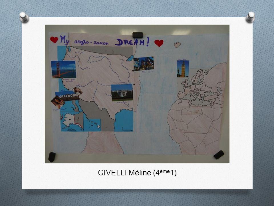 CIVELLI Méline (4ème1)