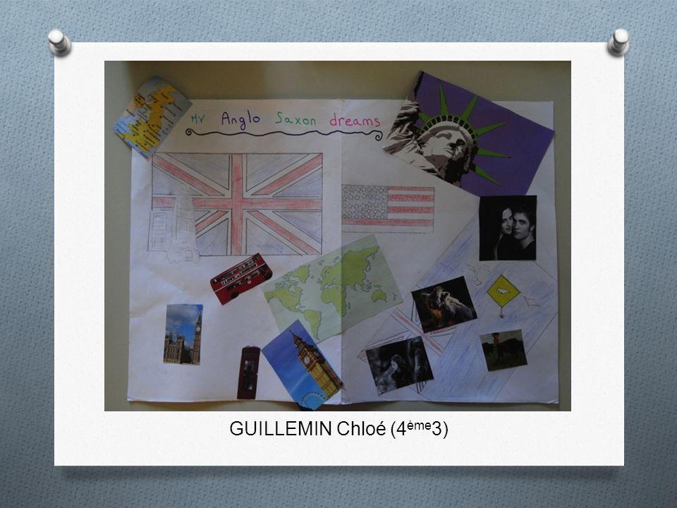 GUILLEMIN Chloé (4ème3)