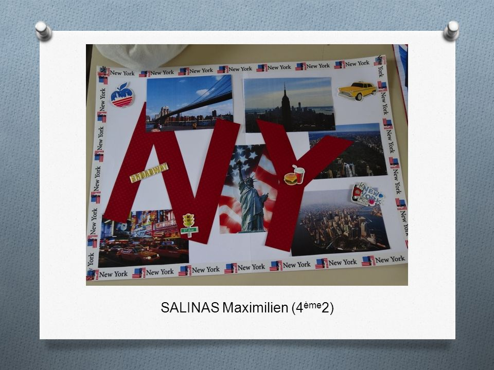 SALINAS Maximilien (4ème2)