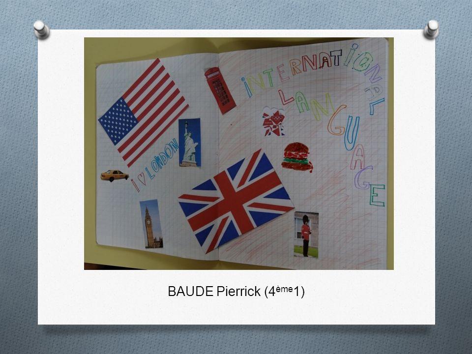 BAUDE Pierrick (4ème1)