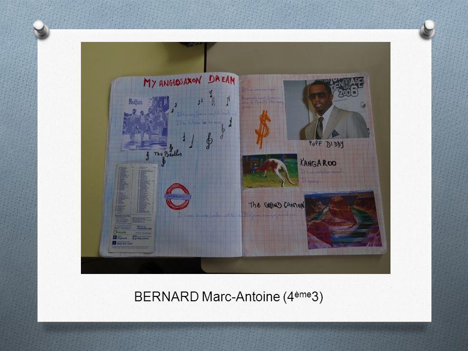 BERNARD Marc-Antoine (4ème3)
