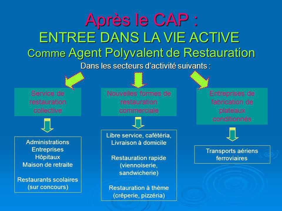 Après le CAP : ENTREE DANS LA VIE ACTIVE