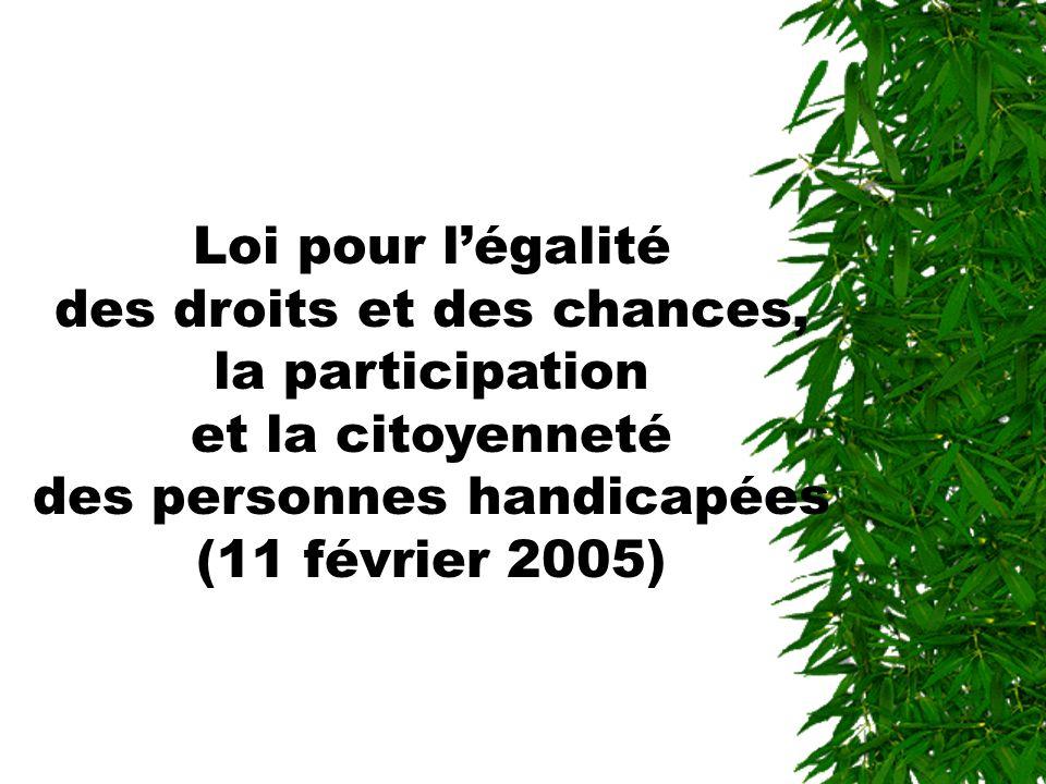 Loi pour l'égalité des droits et des chances, la participation et la citoyenneté des personnes handicapées (11 février 2005)
