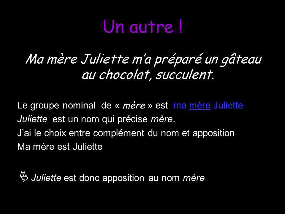 Ma mère Juliette m'a préparé un gâteau au chocolat, succulent.