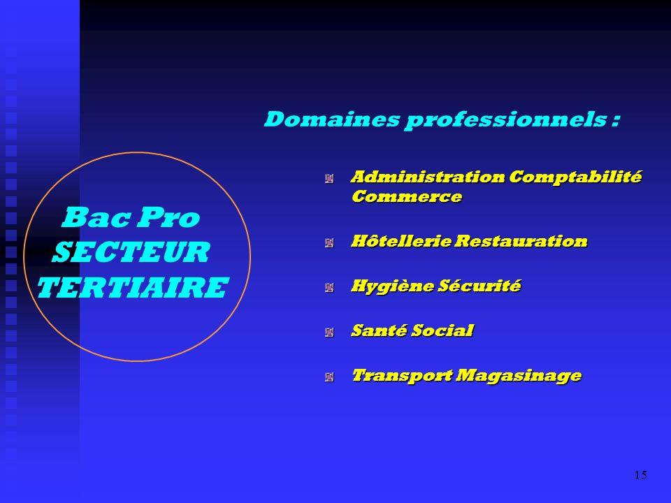 Bac Pro SECTEUR TERTIAIRE