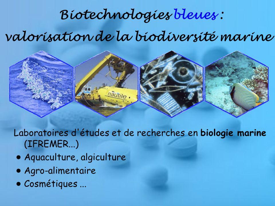 Biotechnologies bleues : valorisation de la biodiversité marine