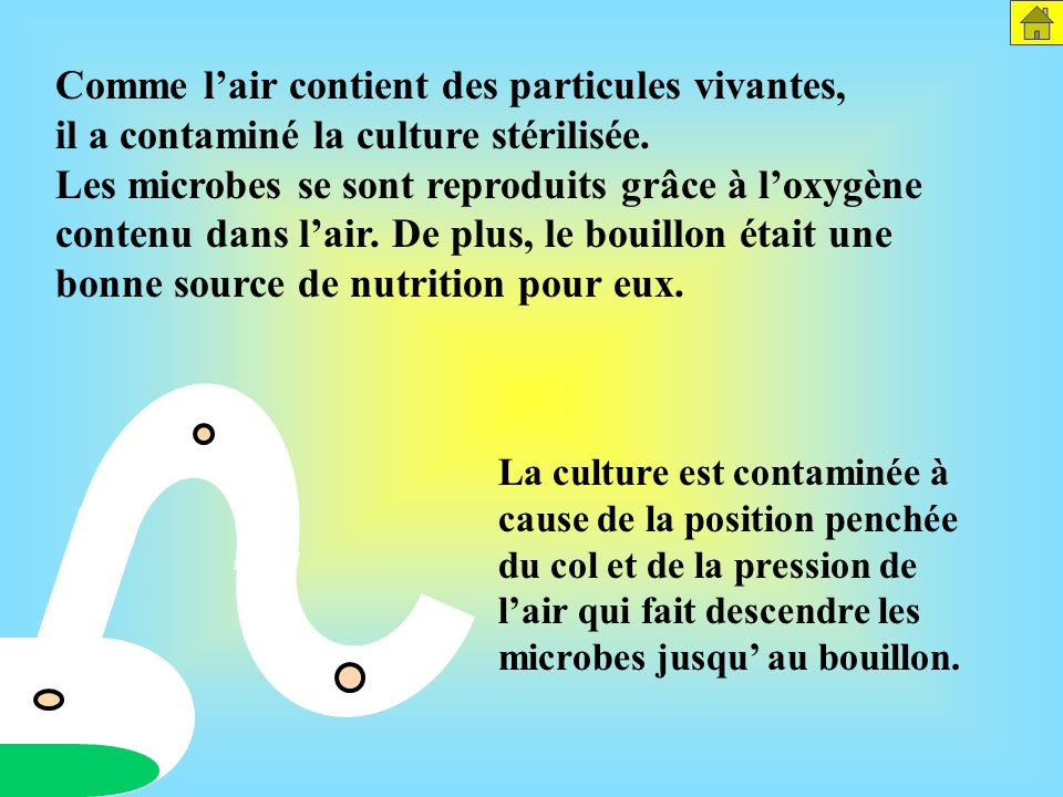 Comme l'air contient des particules vivantes, il a contaminé la culture stérilisée. Les microbes se sont reproduits grâce à l'oxygène contenu dans l'air. De plus, le bouillon était une bonne source de nutrition pour eux.