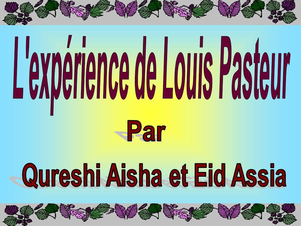 L expérience de Louis Pasteur Qureshi Aisha et Eid Assia