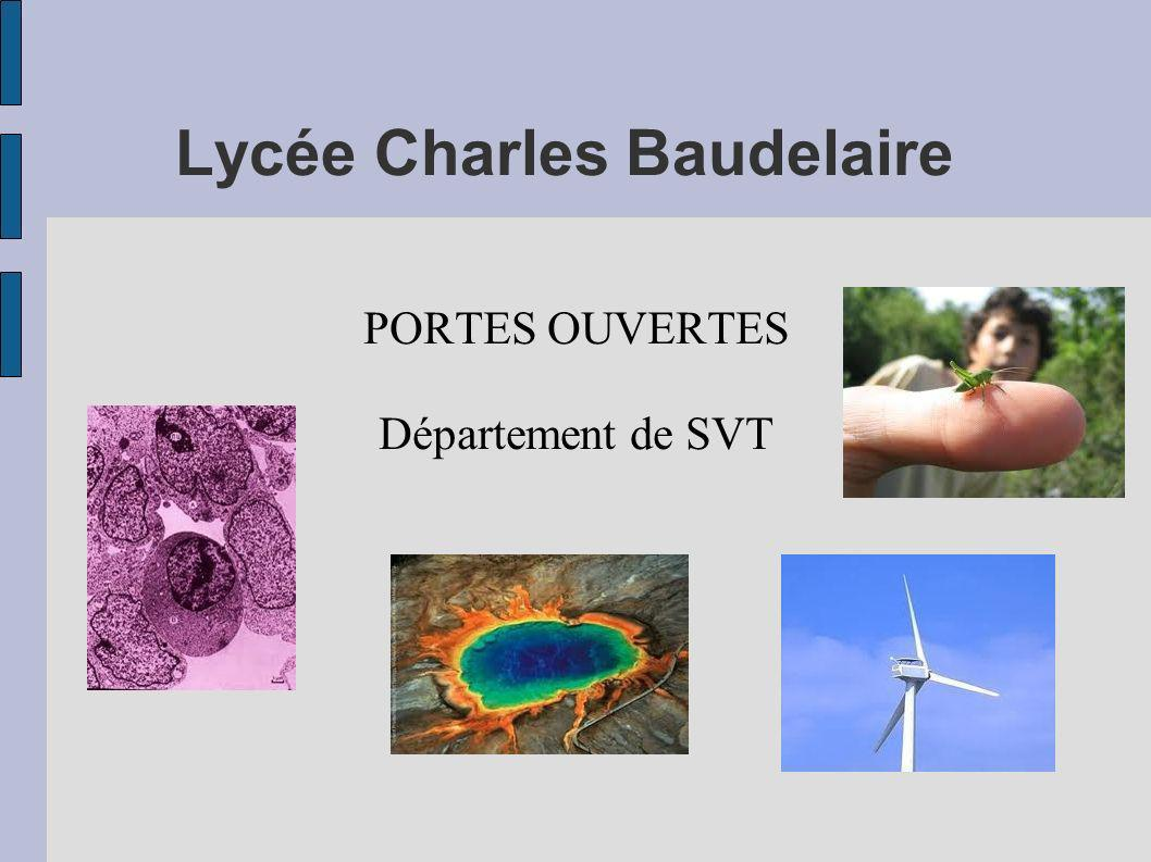 Lycée Charles Baudelaire