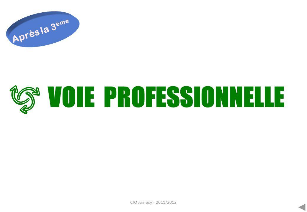 Après la 3ème VOIE PROFESSIONNELLE CIO Annecy - 2011/2012