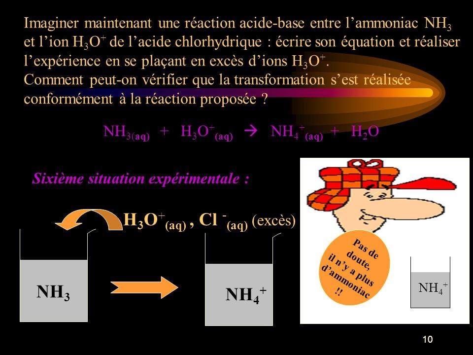 H3O+(aq) , Cl -(aq) (excès)