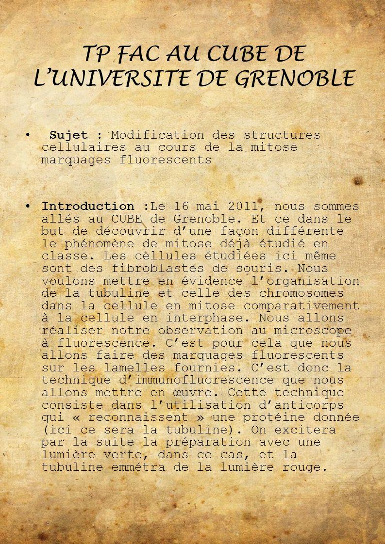 TP FAC AU CUBE DE L'UNIVERSITE DE GRENOBLE
