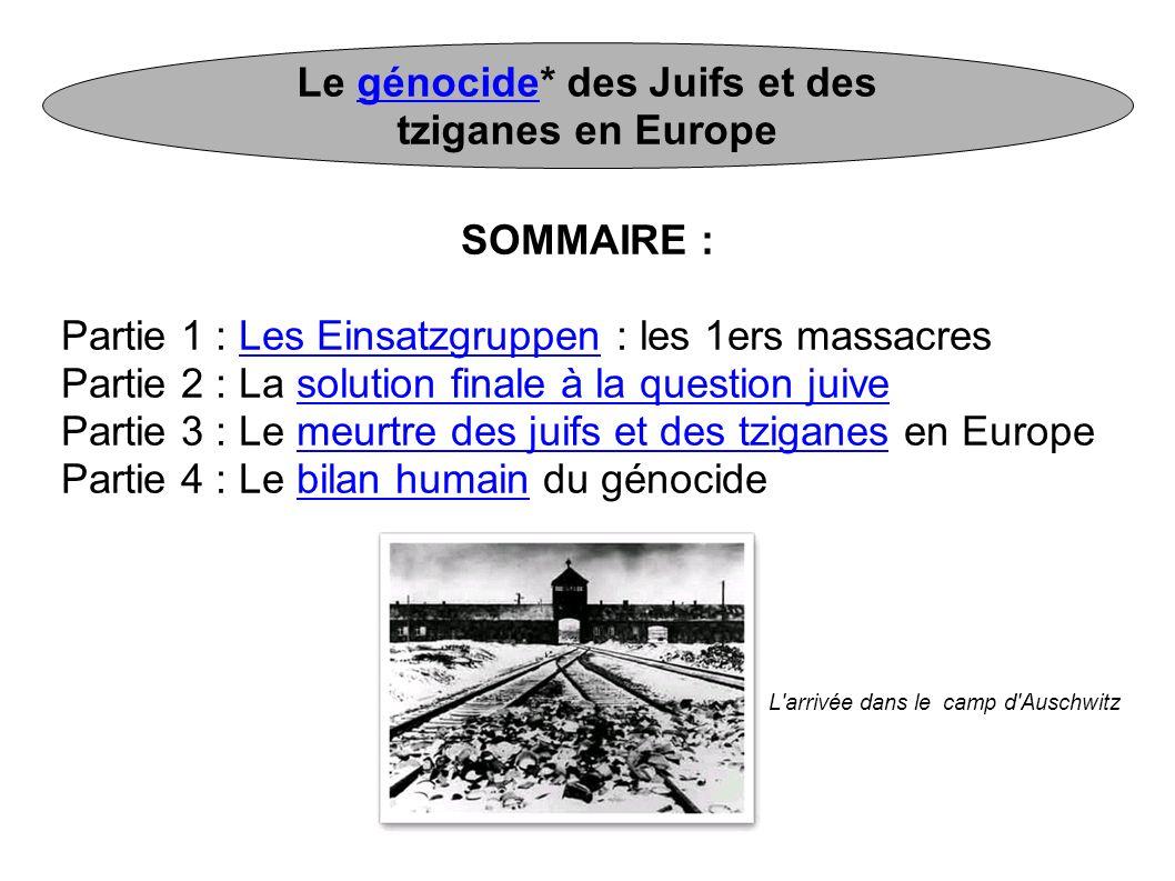 Le génocide* des Juifs et des tziganes en Europe