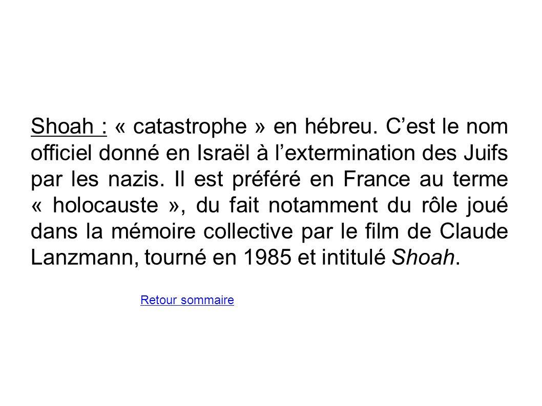 Shoah : « catastrophe » en hébreu