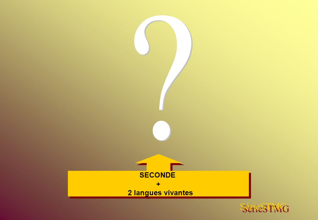 SECONDE + 2 langues vivantes SérieSTMG