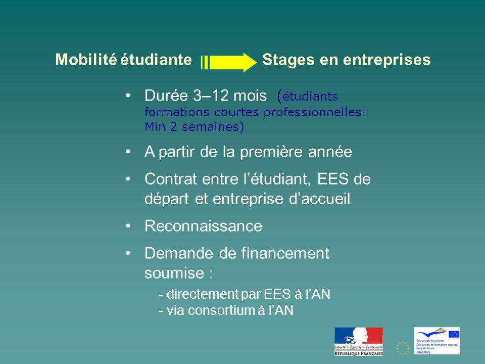 Mobilité étudiante Stages en entreprises
