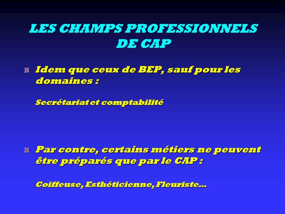LES CHAMPS PROFESSIONNELS DE CAP