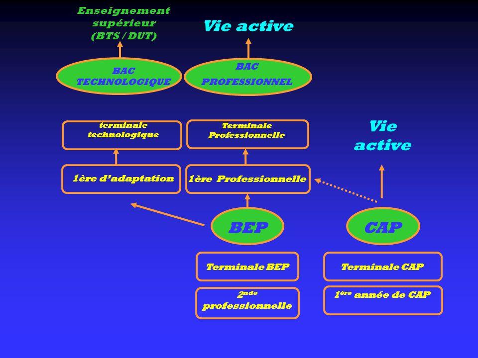 Vie active Vie active BEP CAP
