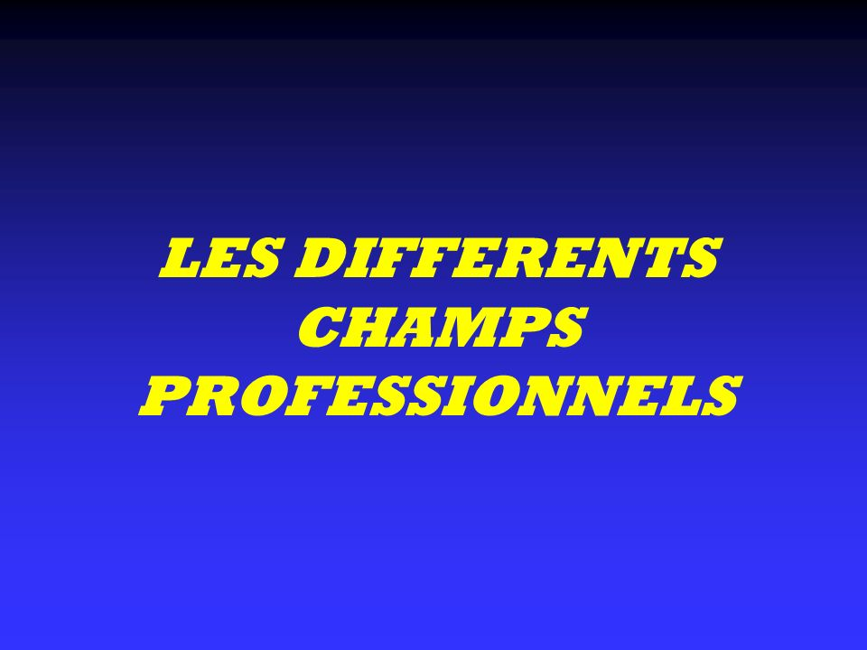 LES DIFFERENTS CHAMPS PROFESSIONNELS