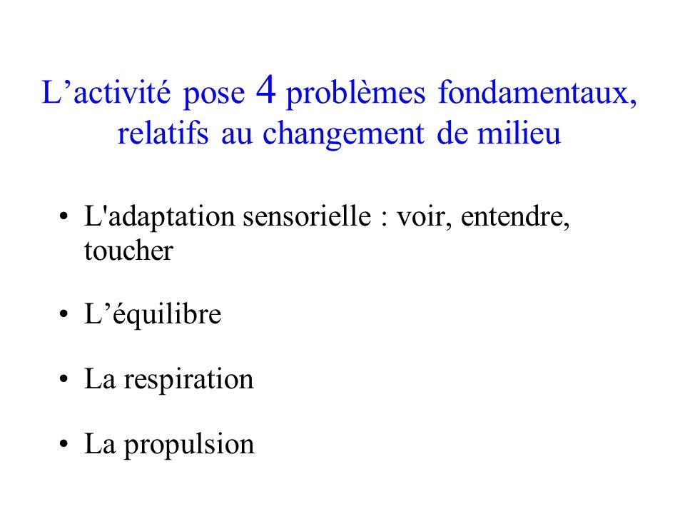 L'activité pose 4 problèmes fondamentaux, relatifs au changement de milieu