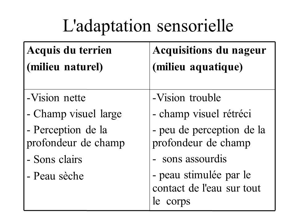 L adaptation sensorielle