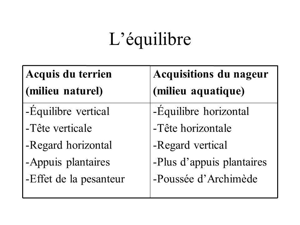 L'équilibre Équilibre horizontal Tête horizontale Regard vertical