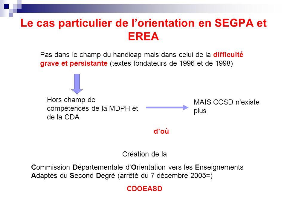 Le cas particulier de l'orientation en SEGPA et EREA