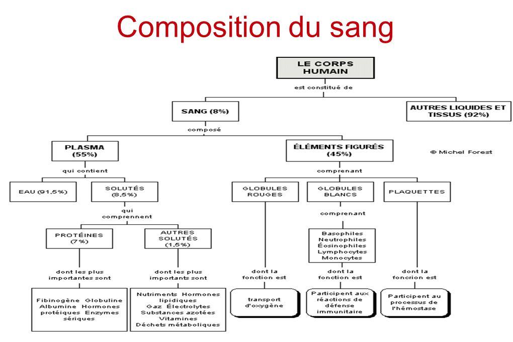 Composition du sang